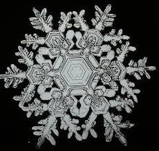 More than Movies: Snowflake Bentley
