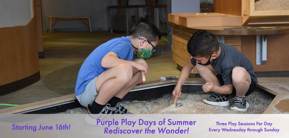 Purple Play Days of Summer
